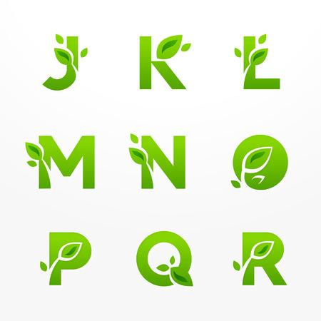 carta: Vector conjunto de cartas ecológicas verdes con hojas. Fuente ecológica de J a R. Vectores