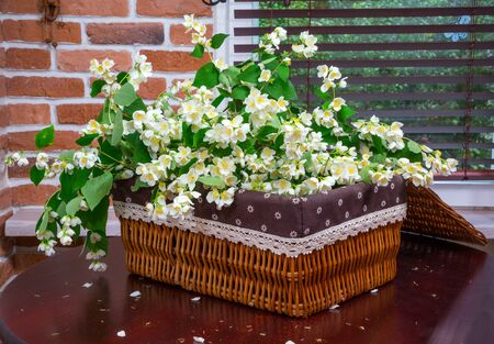 basket weaving: wicker baskets of jasmine flowers on a background in interior design. wooden table. close-up