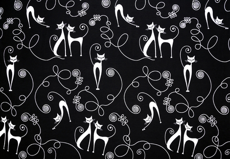 fibra: stylish white cat on a black background, wallpaper, graphics