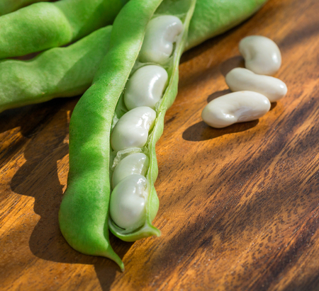 white beans: green pod white beans close-up on a wooden table. vegetables, cereals. macro.