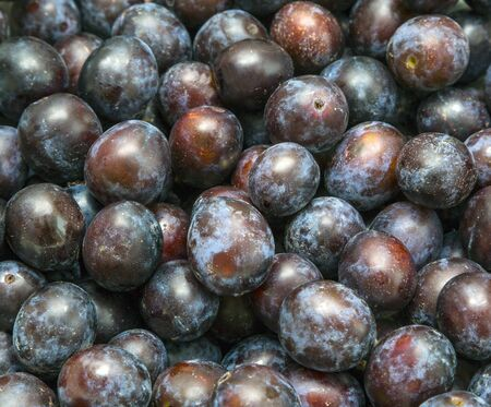 fruit trade: a lot of ripe plums close-up, fruit. market, trade