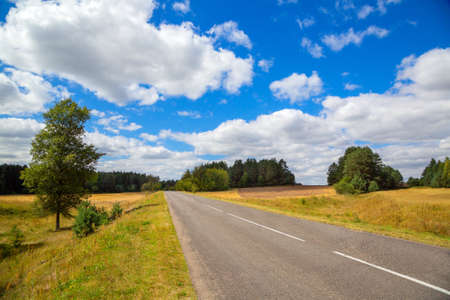 rural development: asphalted road. landscape with trees on the background of blue sky with clouds Stock Photo