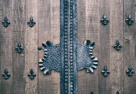 small details: Ancient wooden gate fragment texture with small details