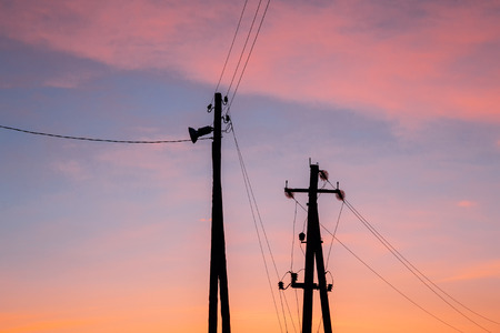 Silhouette of a pillar of the power cable and a street light against the backdrop of a colorful sky
