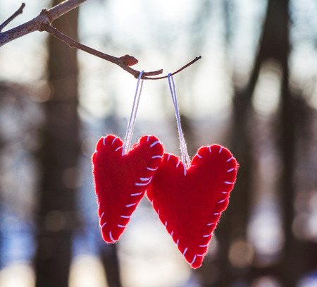 ahorcada: Red romantic heart hanged on a snowy forest shrub, winter, Valentines Day, holiday card Foto de archivo