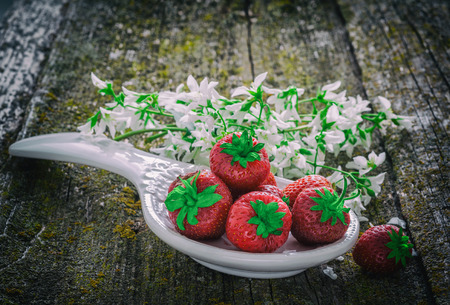 seasonally: Still life with porcelain dishes of ripe strawberries and white flowers on an old wooden surface. retro style
