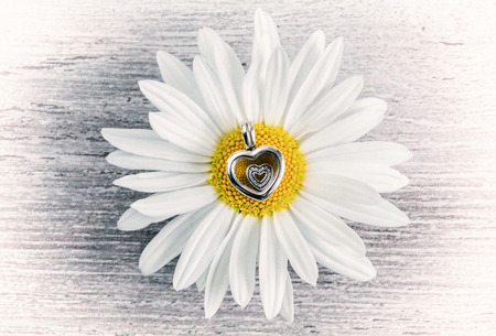 Silver pendant - heart and daisy flower on a wooden surface, jewelery for women, modern fashion, jewels, macro, retro-style, selective focus