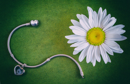 Silver bracelet and daisy flower on the green surface, jewelry for women, modern fashion, precious products, macro, selective focus, retro style,
