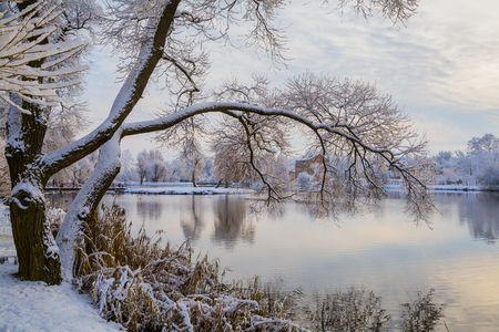 winter landscape near the water with trees covered with snow in the old park, nature,