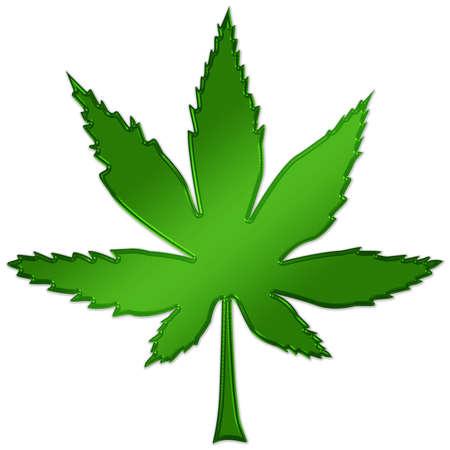 marihuana leaf: Hoja de marihuana Foto de archivo