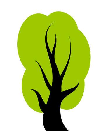 broad leaved tree:  green tree