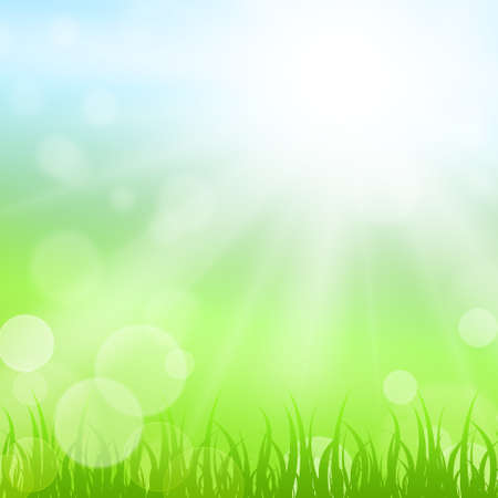 Sunny nature background photo
