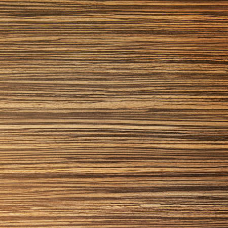 Striped wood texture photo