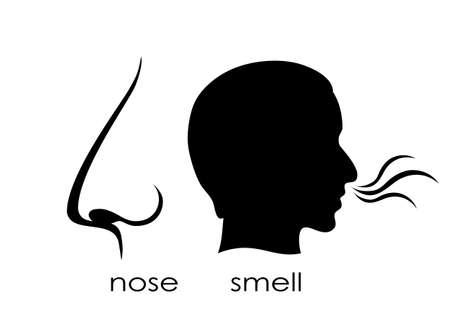 olfato: El sentido del olfato s�mbolo