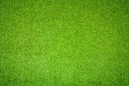 녹색 잔디의 자연 배경