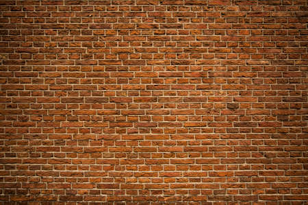 fulvous: Brickwall background