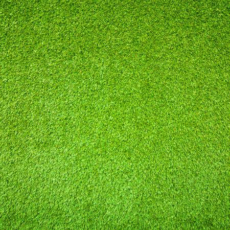 Green grass background Stock Photo - 22225535