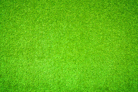 Green grass 版權商用圖片 - 28904910
