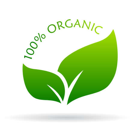 young leaf: 100 organic icon Illustration