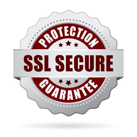 Ssl garantie de protection sécurisé Vecteurs