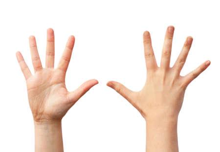 Duas mãos humanas vazias, vista dianteira e traseira
