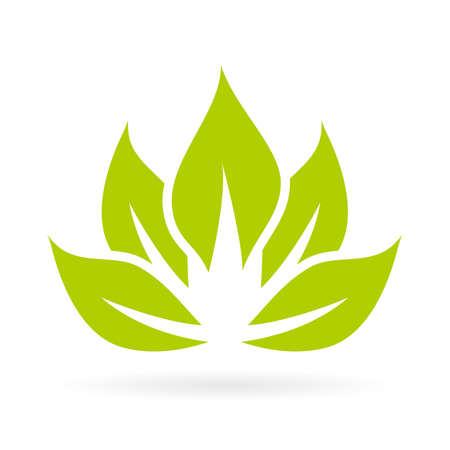 paz interior: icono de la flor de loto