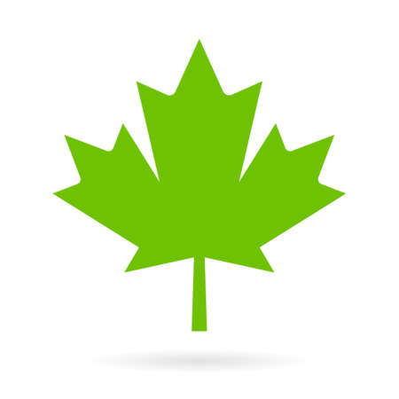 Green maple leaf vector icon