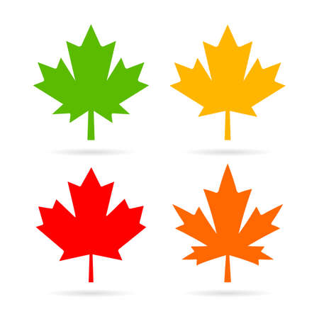 Maple leaves vector set