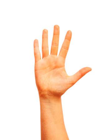 part of me: mano levantada humana aislada en el fondo blanco