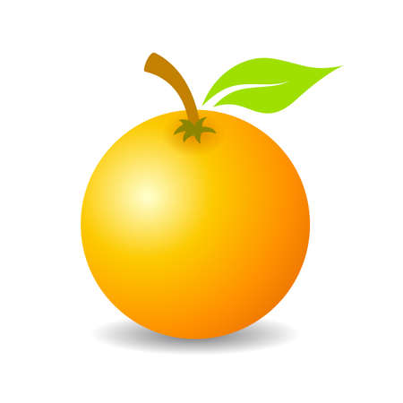 alphabet tree: Tropical orange fruit vector icon
