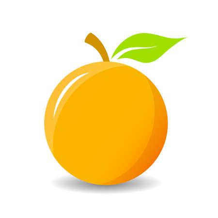 zest: Orange vector icon illustration