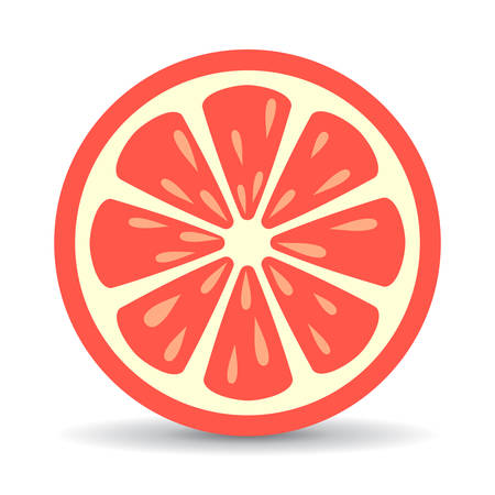 Grapefruit vector icon Illustration