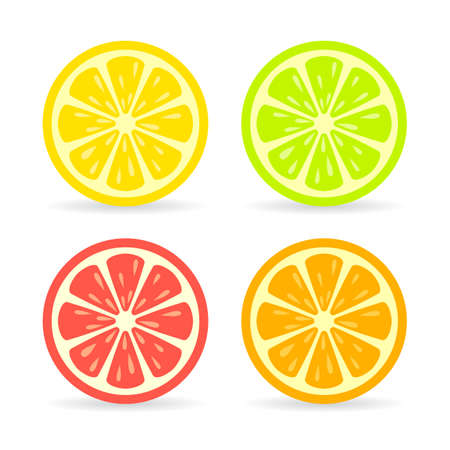 limon: Citrus fruit slice vector icon