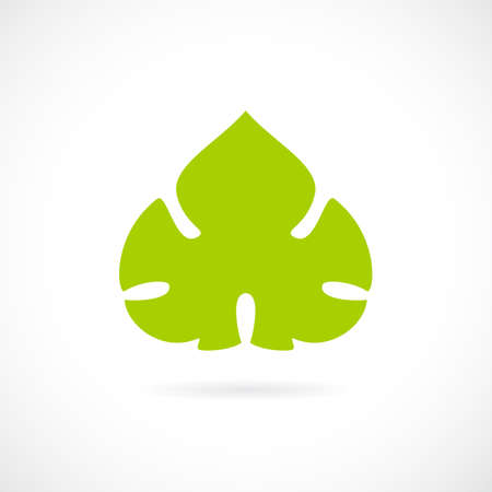 winemaking: Grape green leaf icon Illustration