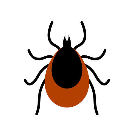 Mite tick vector icon