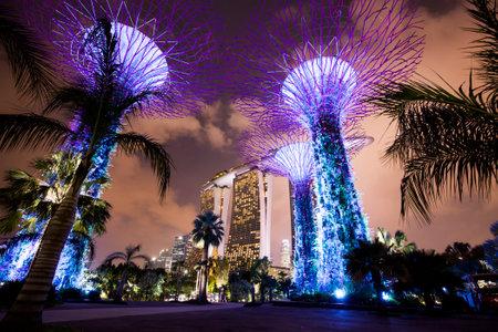 ベイ、シンガポールの夜の庭園