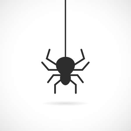 Spider vector icon