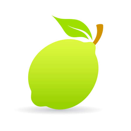 Green lime vector icon Vectores