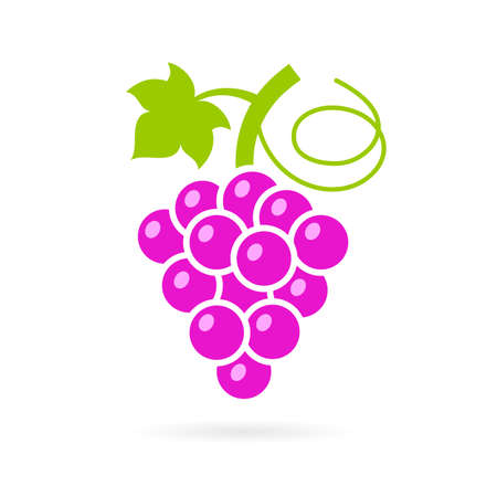 icon vector: Red sweet grape vector icon Illustration