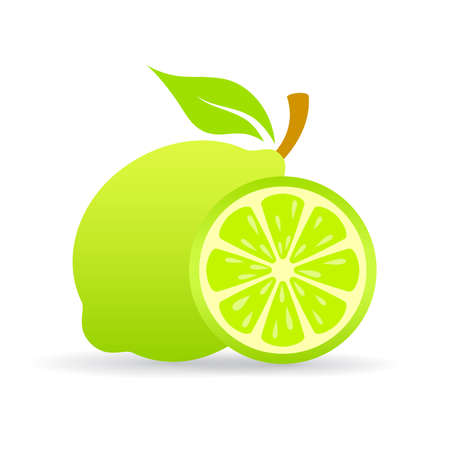 Lime slice icon. Illustration