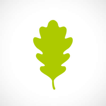 greenery: Green fresh oak leaf icon Illustration