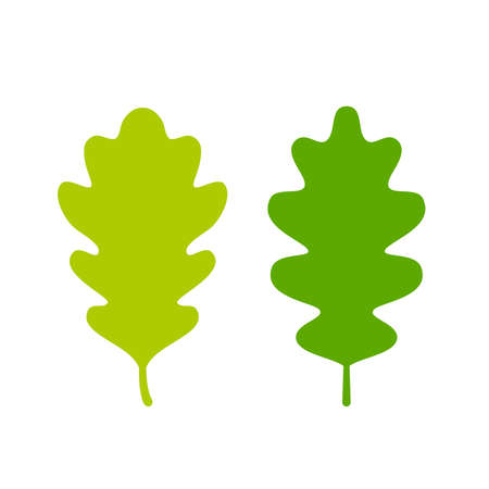 Two green oak leaves set Ilustracja