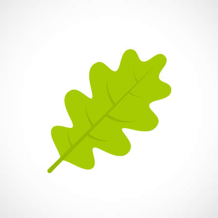 Oak leaf vector icon