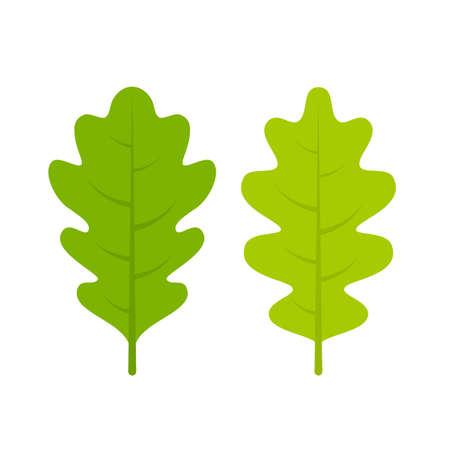 緑の新鮮なオーク リーフレット ベクトル図
