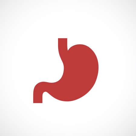 Stomach vector icon Illustration
