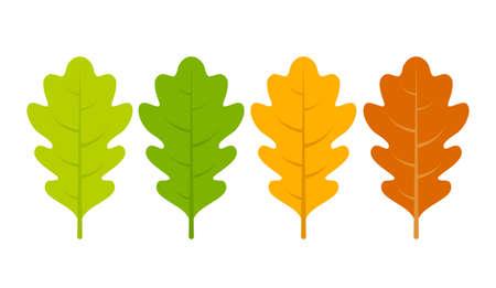 Seasonal specific oak leaves icon