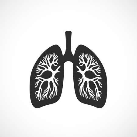Human lungs anatomy vector icon Illustration