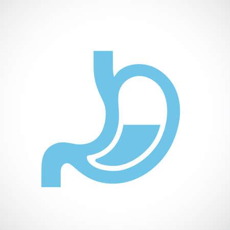 Human stomach anatomy icon on white background, vector illustration. Illustration