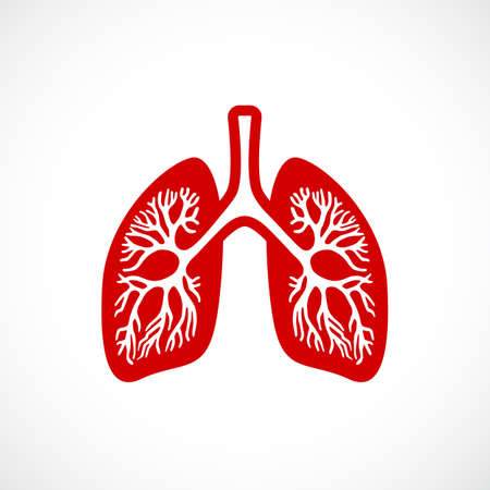 Breath lungs vector icon Illustration
