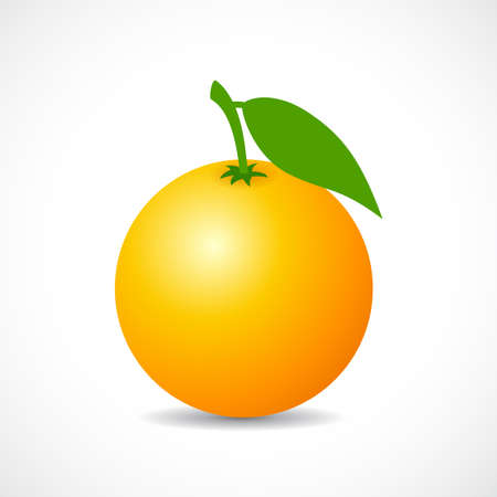 Ripe orange vector icon